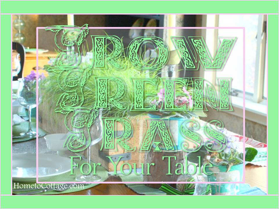 HometoCottage.com Grow Green Grass For Your Table