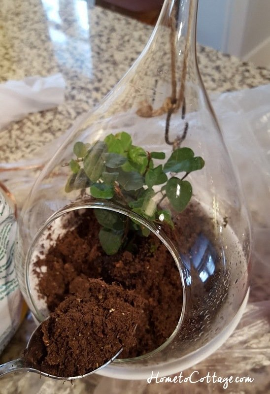 HometoCottage.com spoon in extra soil around plant