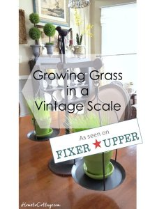 HometoCottage.com Growing Grass in a Vintage Scale, as seen on Fixer Upper