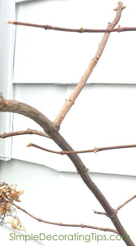 SimpleDecoratingTips.com buds on branches