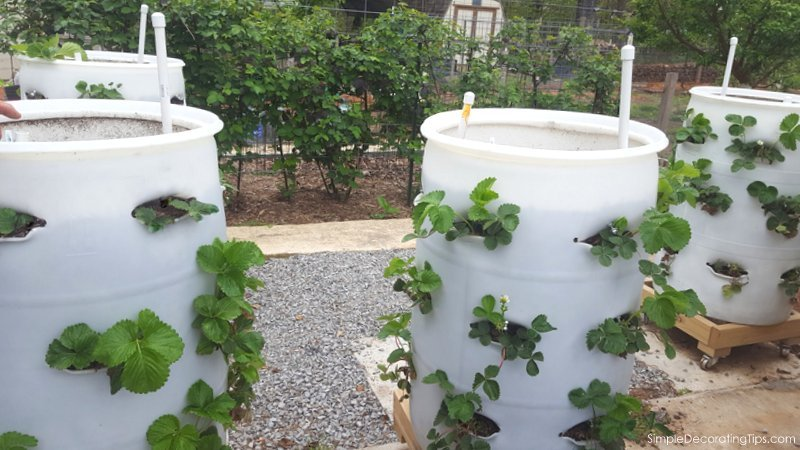ingenious tips to diy this vegetable planter simpledecoratingtips.com