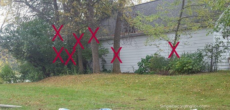 SimpleDecoratingTips.com we had to cut down 13 trees