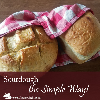 two different types of sourdough loaves made the simple way