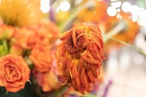 Gritty Flower