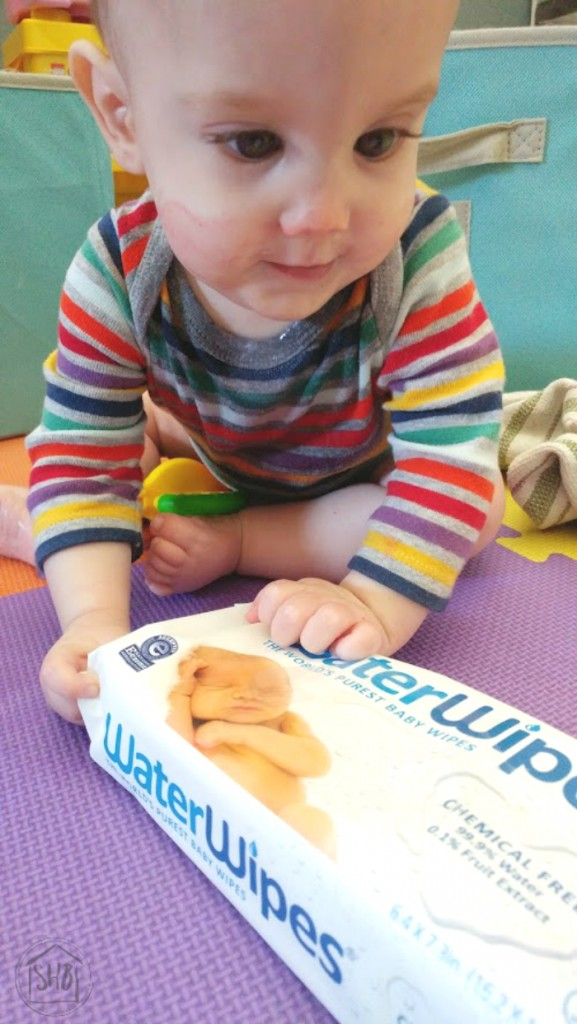 baby's first year - first foods and feeding
