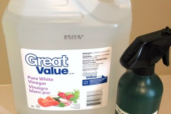 10 Great Uses for Vinegar Around the Home