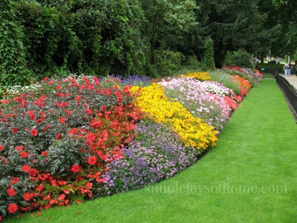 Beautiful display of flowers in St. James' Park | Simple Joys Of Home