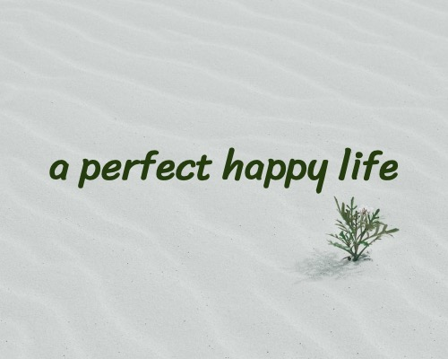 a perfect happy life