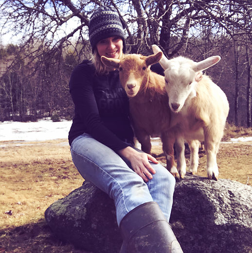 Homestead Blog Hop Feature - Hostile Valley Farm