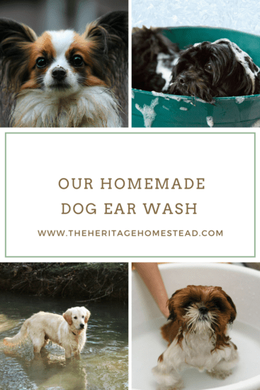 Homeastead Blog Hop Feature - our-homemade-dog-ear-wash