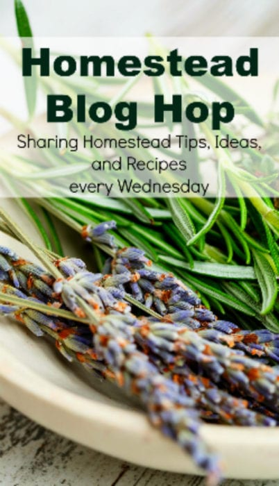 Homestead Blog Hop - Homestead tips, ideas, animal care, and recipes every Wednesday - add your tips, tricks and tips to be featured!