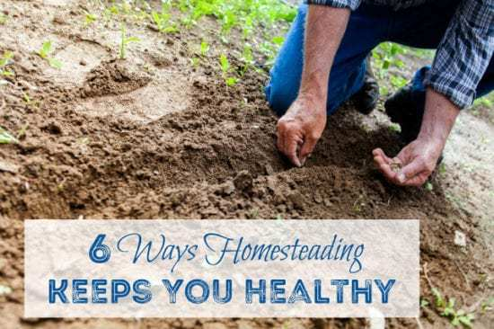 Homestead Blog Hop Feature - 6 Ways Homesteading Keeps You Healthy