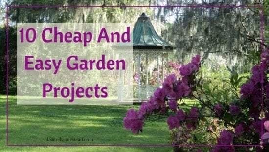 Homestead Blog Hop Feature - 10 cheap and easy-garden-projects