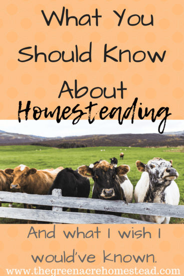 Homestead Blog Hop Feature - What-You-Should-Know-About Homesteading