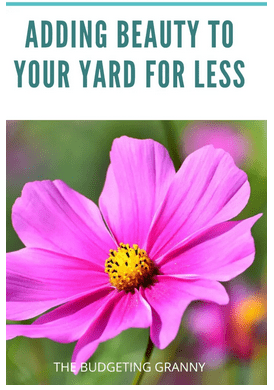 Homestead Blog Hop Feature - adding beauty to your yard for less