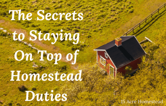 Homestead Blog Hop Feature - The-Secrets-to-Staying-On-Top-of-Homestead-Duties