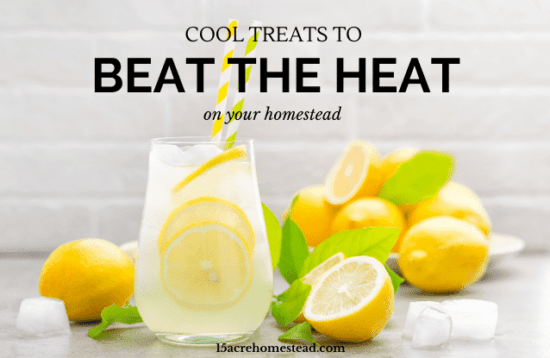 Homestead Blog Hop Feature - Cool Treats to Beat the Heat
