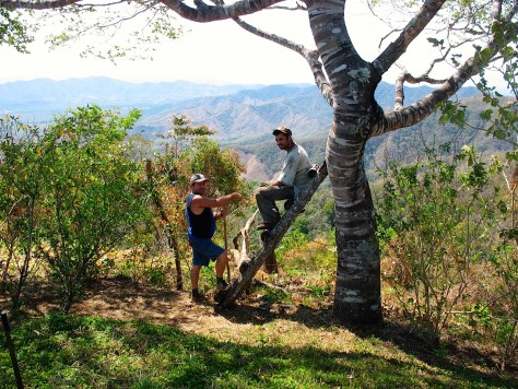 Photograph of two men under a Guapinol tree at the edge of a potential building site on Refugio de Los Angeles. One man sits on a rough hewn ladder propped against the tree, the other stands with his foot propped up on a spade. Bushes dot the perimeter, and hills, mountains and the natural skyline can be seen in the distance.