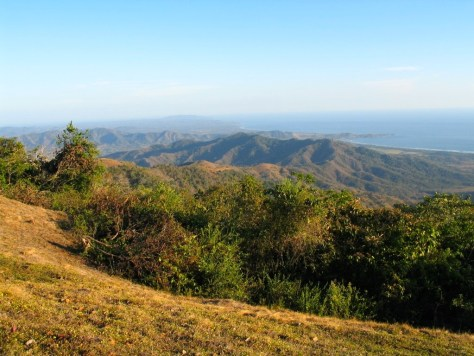 Photograph of a down slope on the edge of a potential building site. The edge of a clearing in the foreground, trees in the middle distance and mountains and the ocean in the distance.