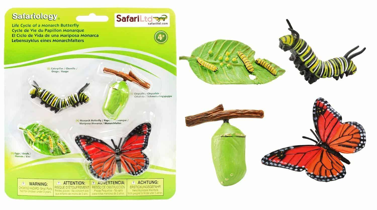 Butterfly Life Cycle Learning Activities For Kids