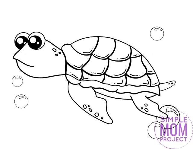 Free Printable Turtle Coloring Page - Simple Mom Project
