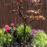 tall maple fountain kit