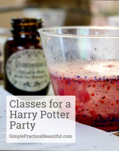 Harry Potter classes | SimplePracticalBeautiful.com