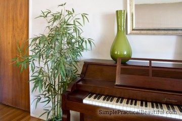A cleaned and dust-free silk bamboo plant