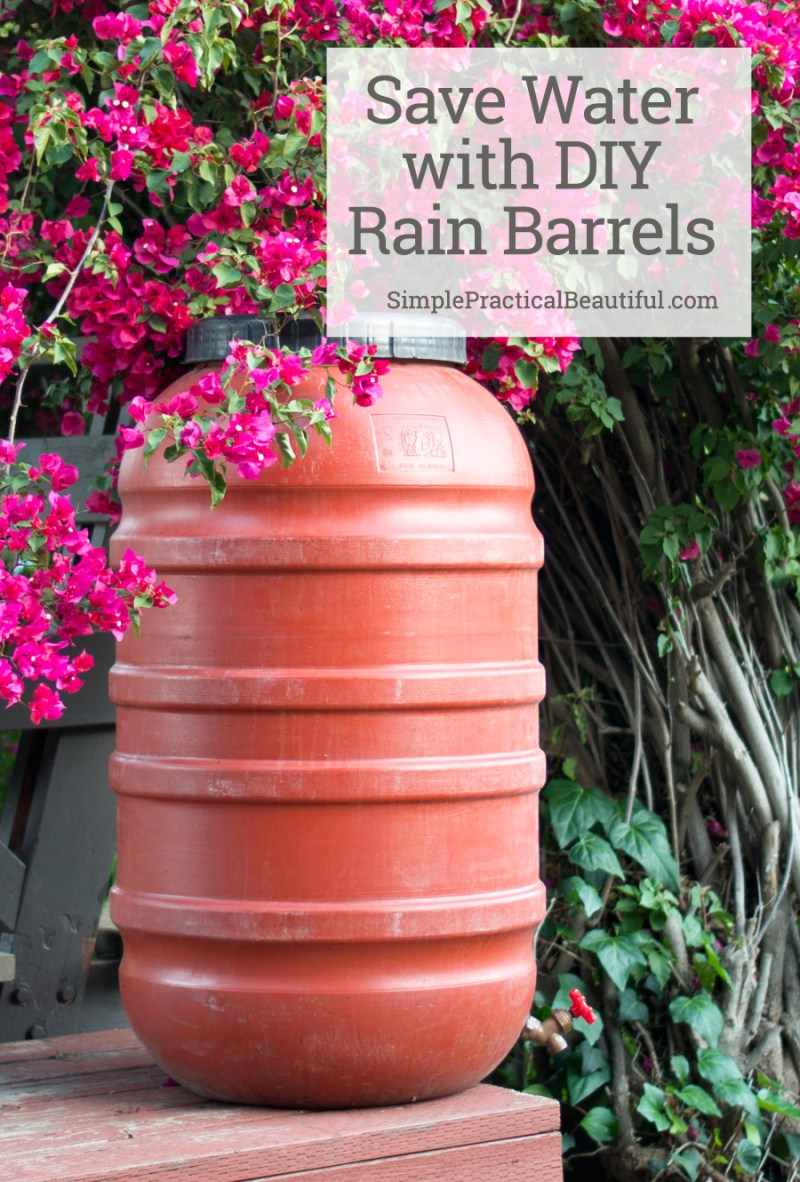 Save water and money with a DIY rain barrel