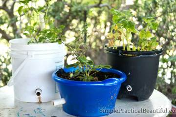 How to make a self-watering planter