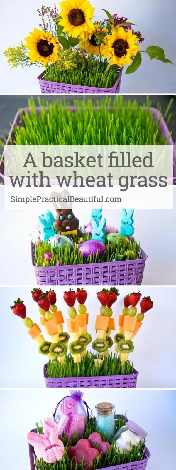 Make a beautiful DIY basket for Easter filled with living grass | centerpiece idea | brunch fruit recipe | Easter basket idea | grow wheat grass