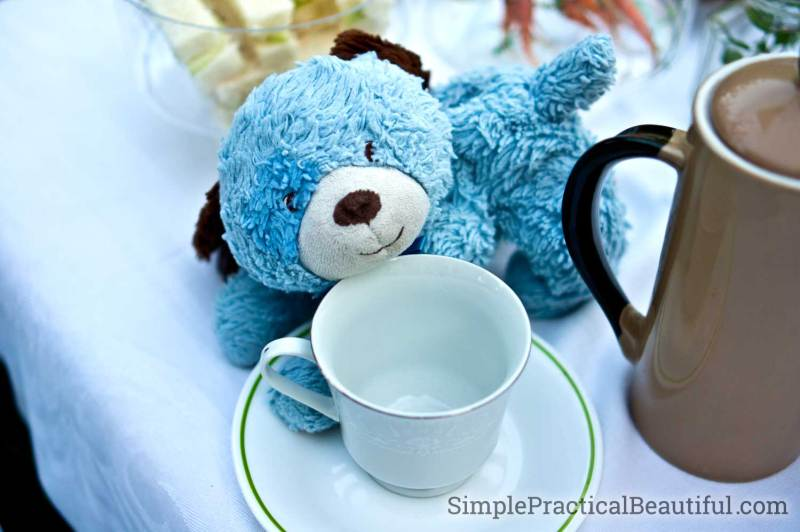 Bring your favorite stuffed-animal to celebrate at a pre-school tea party