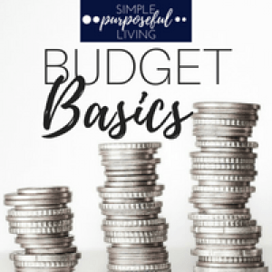 stacked coins budget basics online course