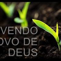Vivendo o novo de Deus
