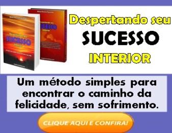 Como obter o sucesso