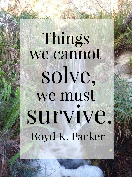 Things we cannot solve we must survive - Simple Sojourns