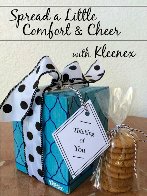 Spread a Little Comfort & Cheer - Simple Sojourns