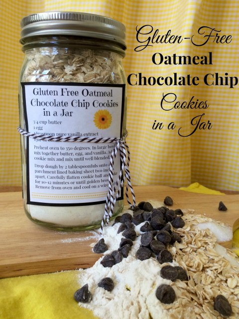 Gluten Free Oatmeal Chocolate Chip Cookies in a Jar - Simple Sojourns