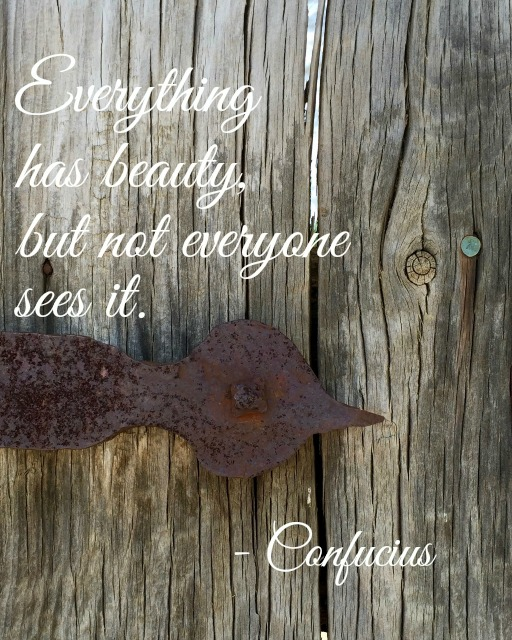 *Everything has beauty, but not everyone sees it - Simple Sojourns