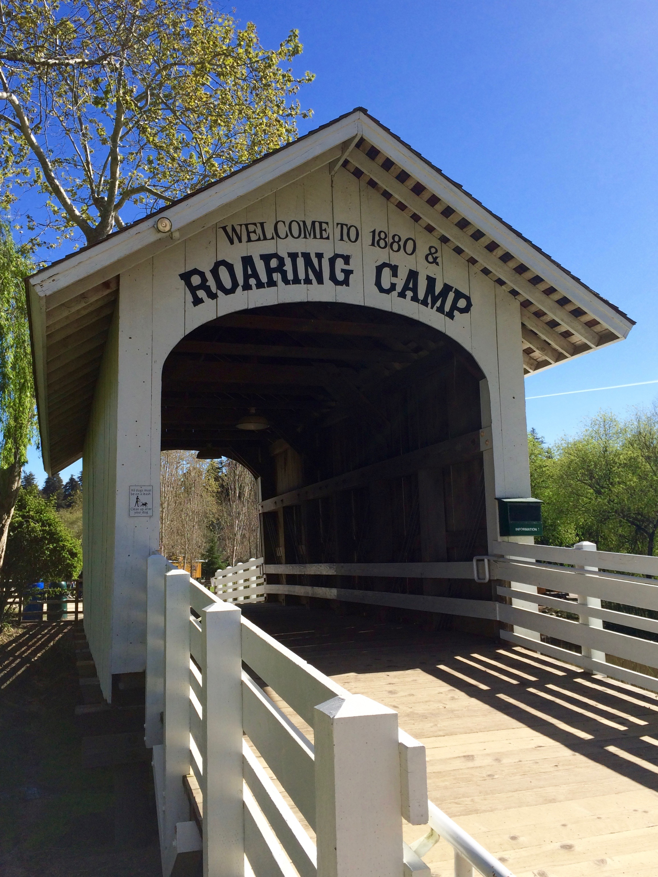 Welcome to Roaring Camp Railroads - Simple Sojourns