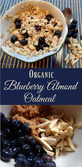 Organic Blueberry Almond Oatmeal - Simple Sojourns