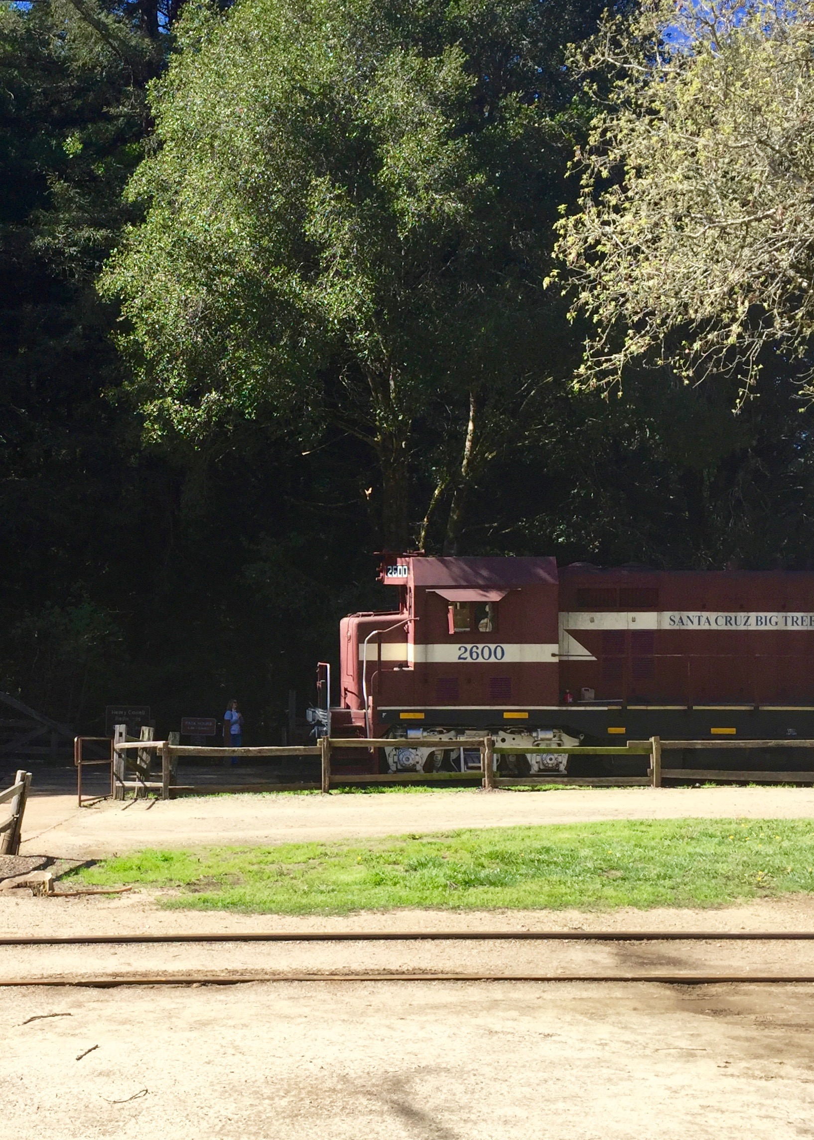 Roaring Camp Railroads - Simple Sojourns