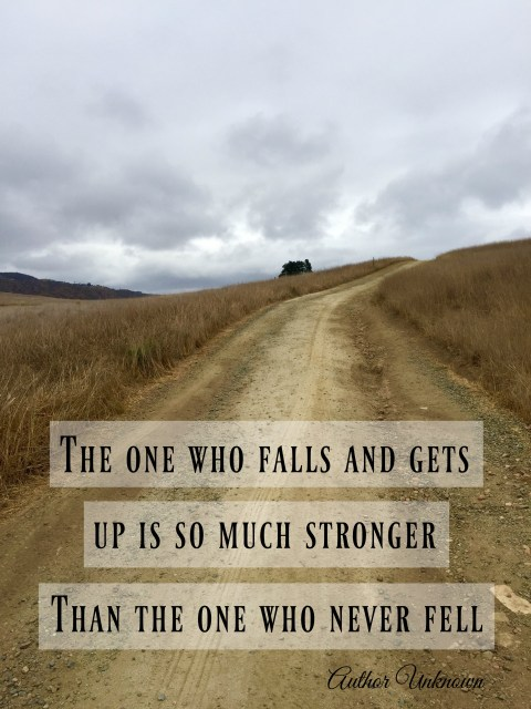 the-one-who-falls-and-never-gets-up-is-so-much-stronger-that-the-one-who-never-fell-simple-sojourns