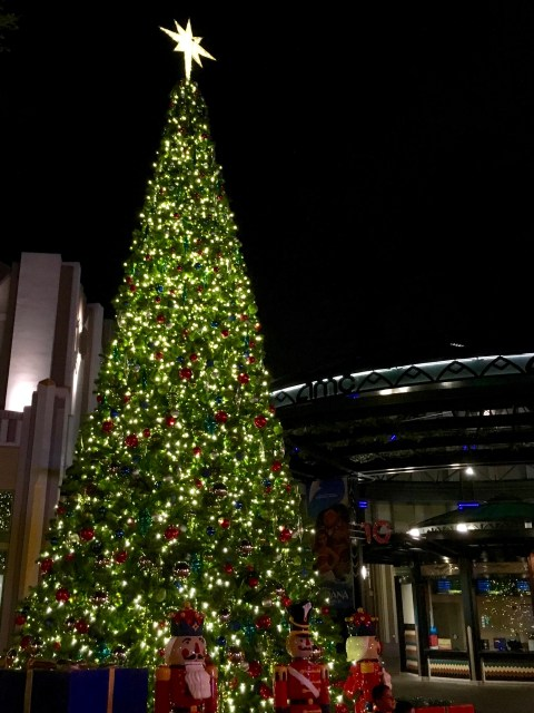 Downtown Disney Christmas Tree - Simple Sojourns