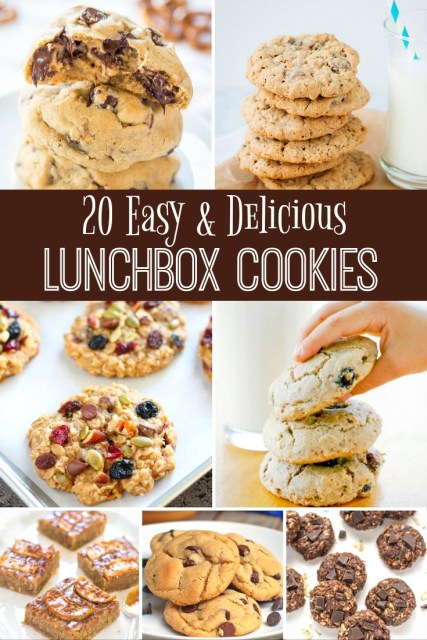 Delicious Lunchbox Cookie Recipes - Simple Sojourns