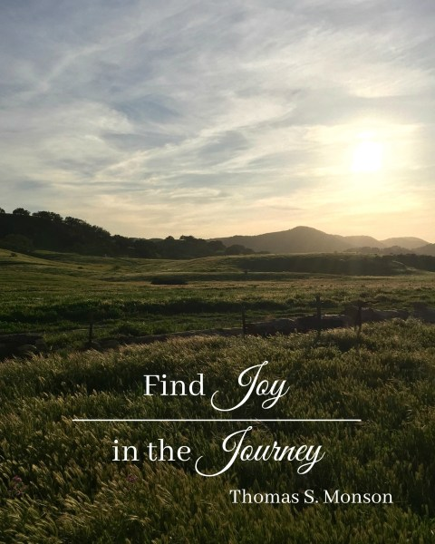 Find Joy in the Journey - Simple Sojourns