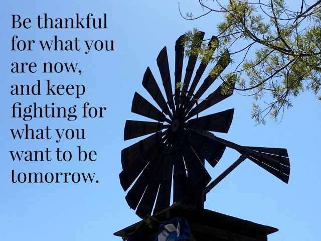 Be Thankful for What You are Now - Simple Sojourns