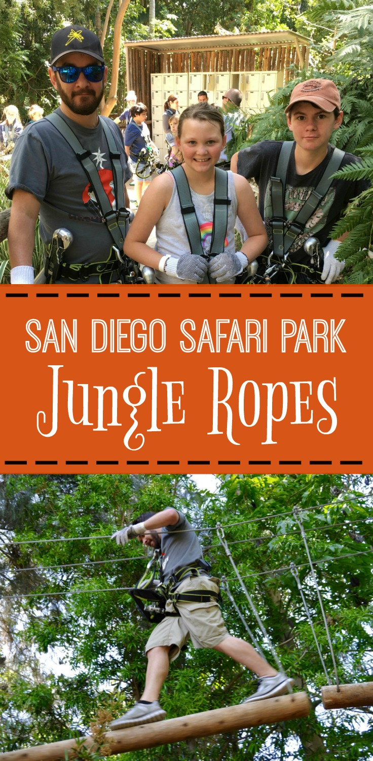 "San Diego Safari Park Jungle Ropes. Climb, balance, swing & walk through the trees on San Diego Safari Park's Jungle Ropes! Challenge yourself while testing your ""jungle"" skills - Simple Sojourns"