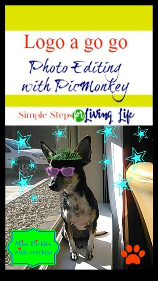PicMonkey is my favorite site for photo editing and graphic design. I have no clue about graphics design but PicMonkey is so easy to use even a monkey can do it. I'm proof! LOL