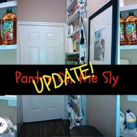 Pantry On the Sly Update – Squeezing space out of thin air!